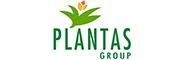 Plantas-Group_tryk_pant